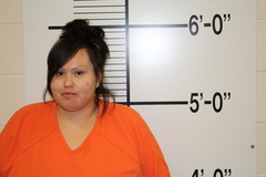 Mugshot of JOHNSON, ALEXIS LEE